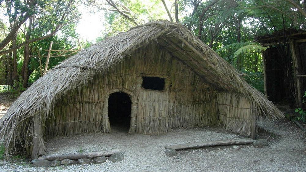 Image result for Maori hut